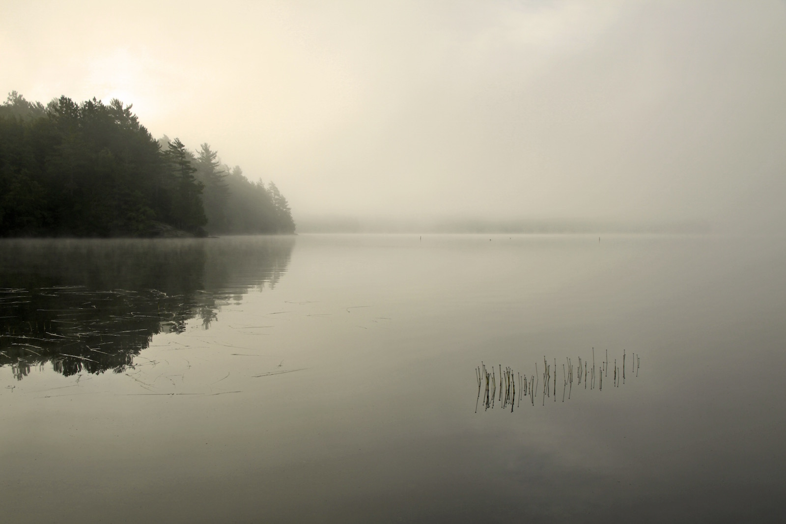 Lake Reflection by Travis Percival