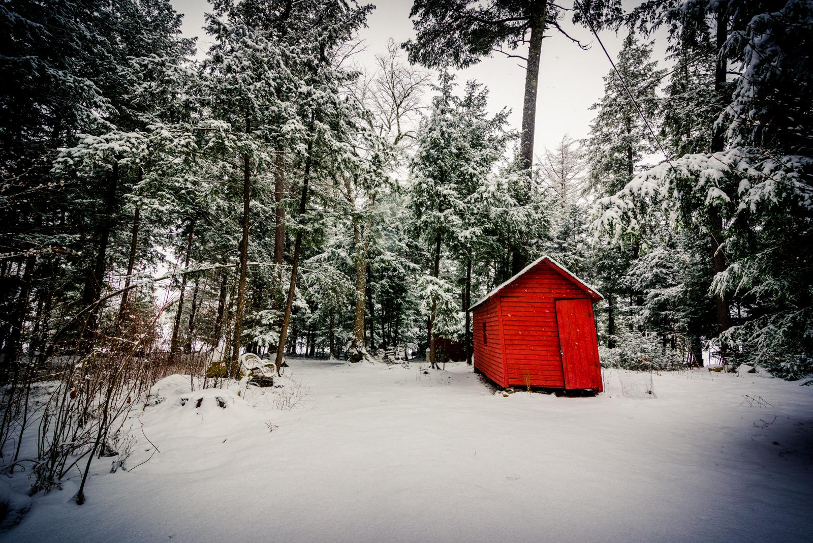 J. Reap: Winter Pause (Landscape)